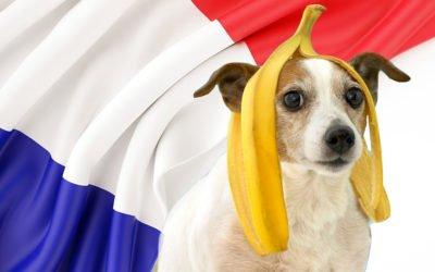 Bienvenue en République Bananière Française